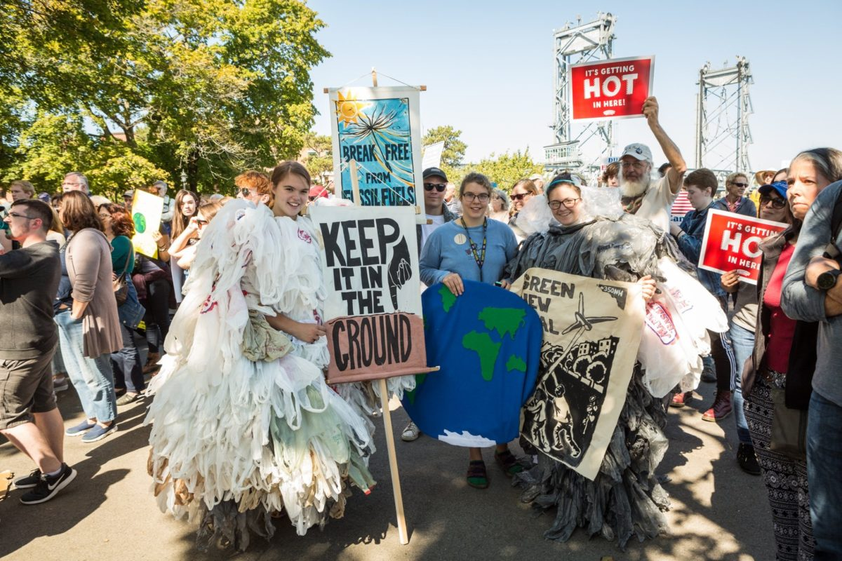 group of people holding signs at a climate strike